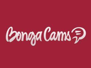 Полный обзор платформы с видеочатами Bongamodels. Способы заработка